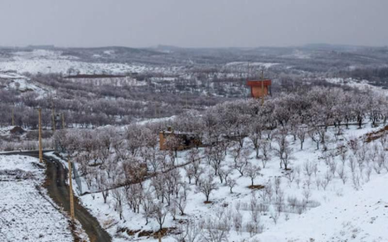 بارش برف و وقوع کولاک در چهار استان کشور