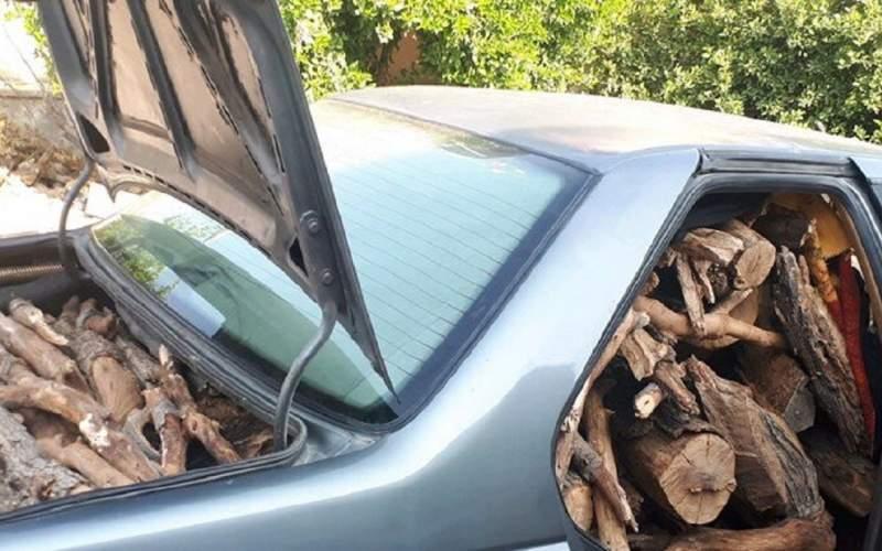 قاچاق چوب با آمبولانس تایید شد