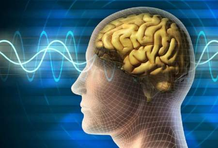 تاثیر مخرب  ویروس کرونا بر مغز