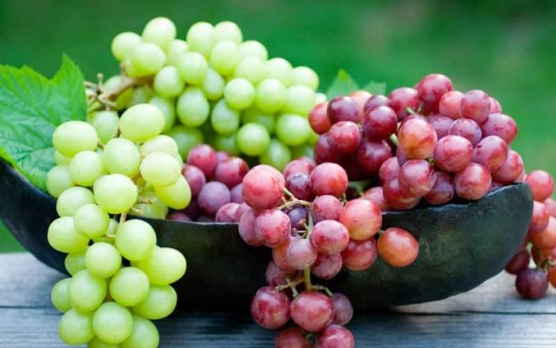 میوه ای که به شدت چربی سوز است