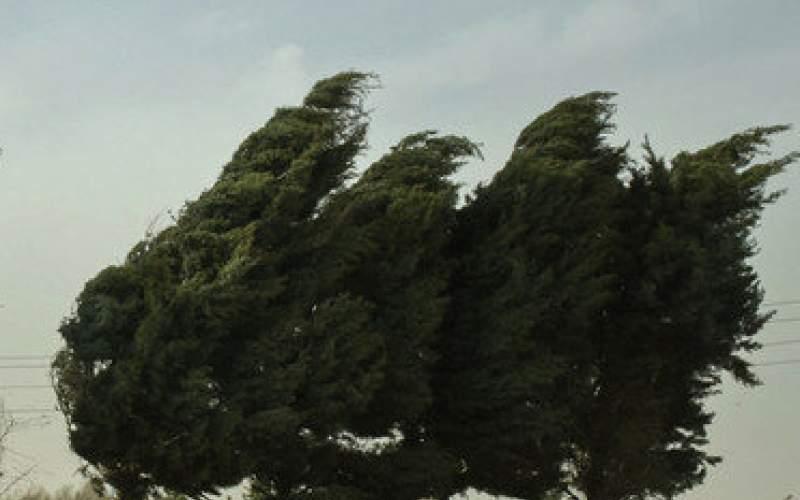 هشدار هواشناسی نسبت به وزش باد در ۱۳ استان