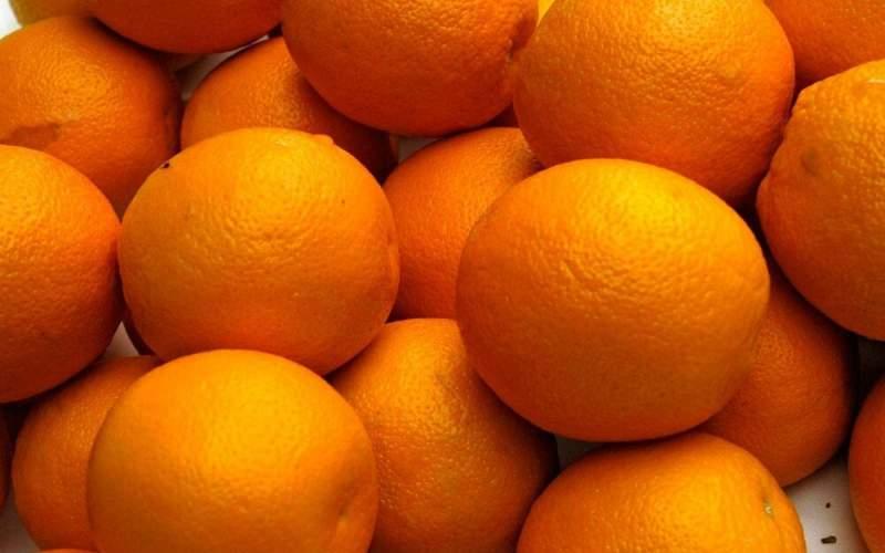 قیمت پرتقال از باغ تا بازار