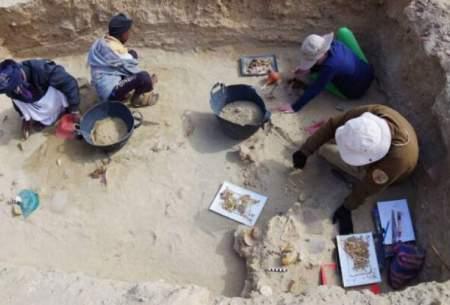 کشف قدیمیترین گورستان حیوانات خانگی درمصر