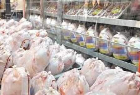 افزایش ۸۲درصدی قیمت مرغ طی ماههای اخیر