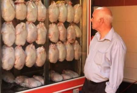 علت مرغ ۴۰ هزار تومانی بیکفایتی مسئولان است