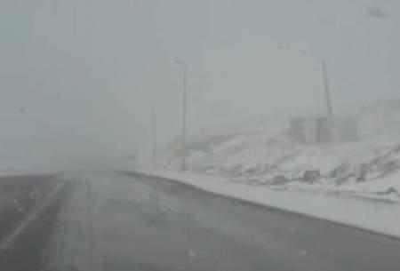 بارش برف در محور فیروزکوه /فیلم