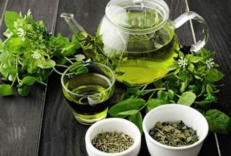 تأثیر جالب چای سبز در پیشگیری از به کرونا