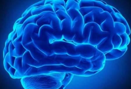 مواد قندی برای رشد مغز کودک مضر است