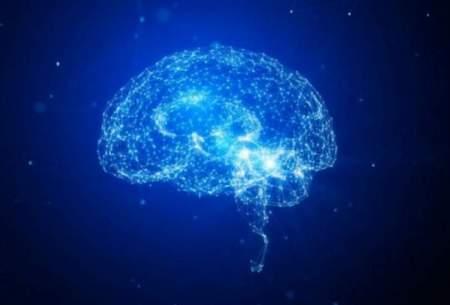 التهاب سینوسی موجب تغییردرفعالیت مغز میشود