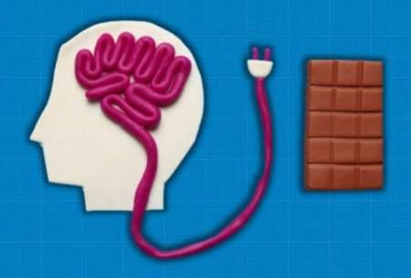 مکانیسم سوئیچ گرسنگی در مغز کشف شد