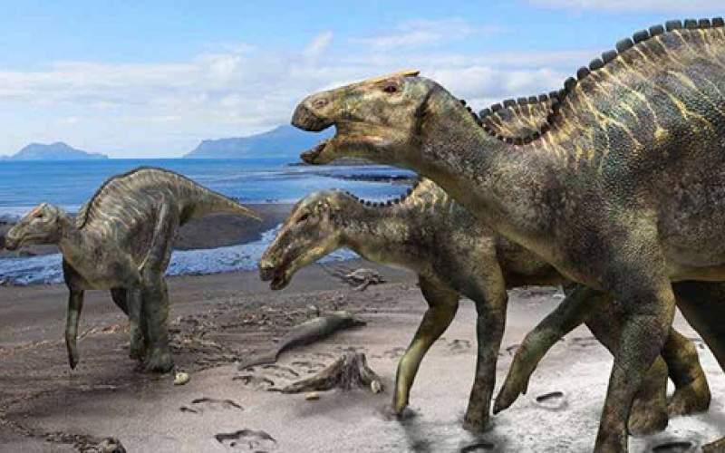 آیا دایناسورها به چرخه حیات برمیگردند؟