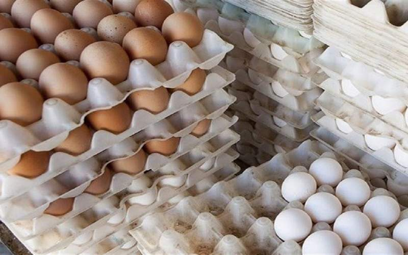 اجباری شدن عرضه تخم مرغ بسته بندی