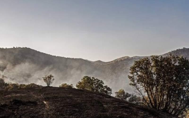 ۳ هکتار از جنگلهای سنندج طعمه حریق شد