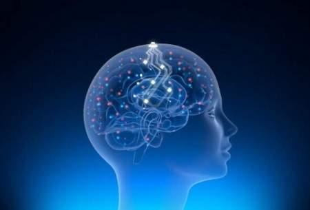 بحرانمدیریتیدرشرکتفناوری عصبی ایلان ماسک