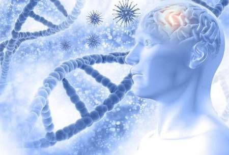 داروی جدید برای کاهش پیشرفت آلزایمر
