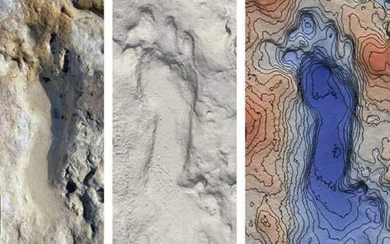 کشف ردپای فسیلشده ۱۰۰هزارساله در اسپانیا