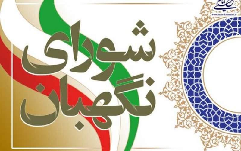 واکنش دولت به مصوبه انتخاباتی شورای نگهبان