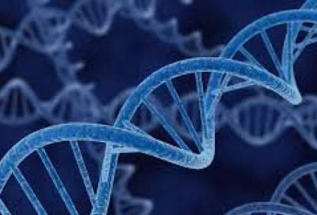 آخرین وضعیت بانک اطلاعات ژنتیک مجرمان