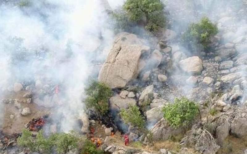 آتش جنگلهای باشت تقریبا مهار شده است