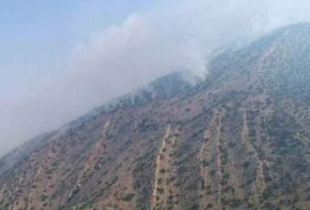 مهار کامل آتش سوزی جنگلهای باشت