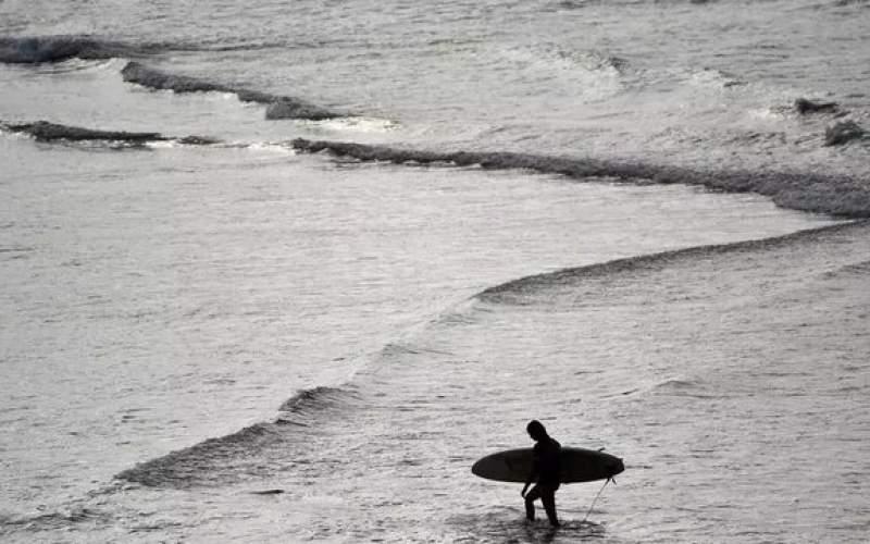 جان باختن یک موج سوار بعد از حمله کوسه