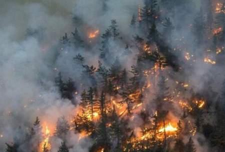 مهار آتش سوزی منطقه حفاظت شده ماله گاله
