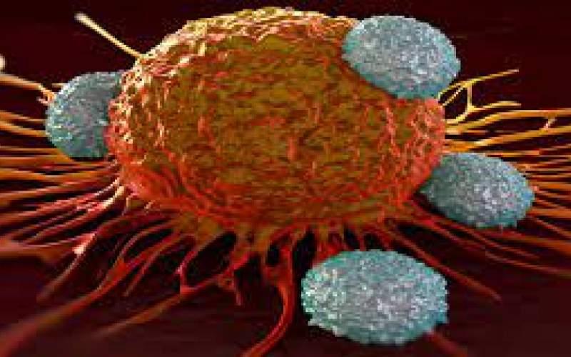 زمان طلایی درمان سرطان را از دست ندهید