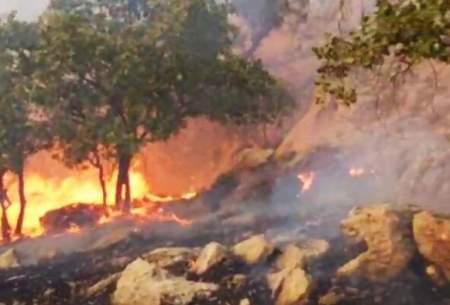 مهار ۲ آتش سوزی جنگلهای گچساران