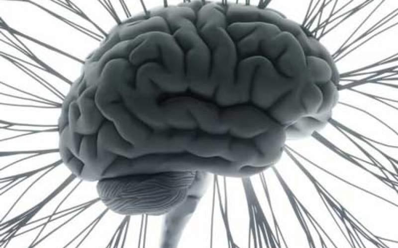 شگفتیهای مغز در مواجهه با موسیقی