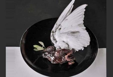 سرو کبوتر در رستوران تهران حاشیهساز شد