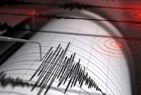 زمین لرزه ۴.۶ ریشتری راور را تکان داد