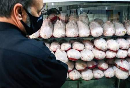 افزایش تقاضا، اسکلت مرغ را کمیاب کرد!