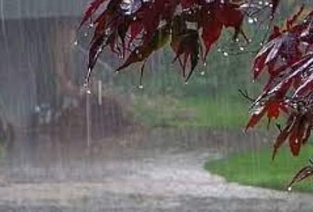 باد و بارش باران در برخی مناطق کشور
