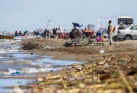 آلودگی های دریایی گریبانگیر آبزیان