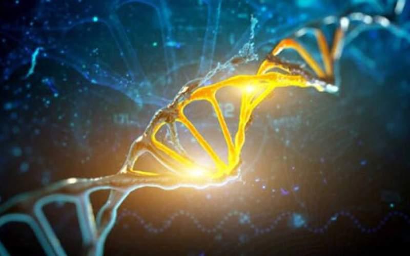 آیا ژنها طول عمر را تعیین میکنند؟