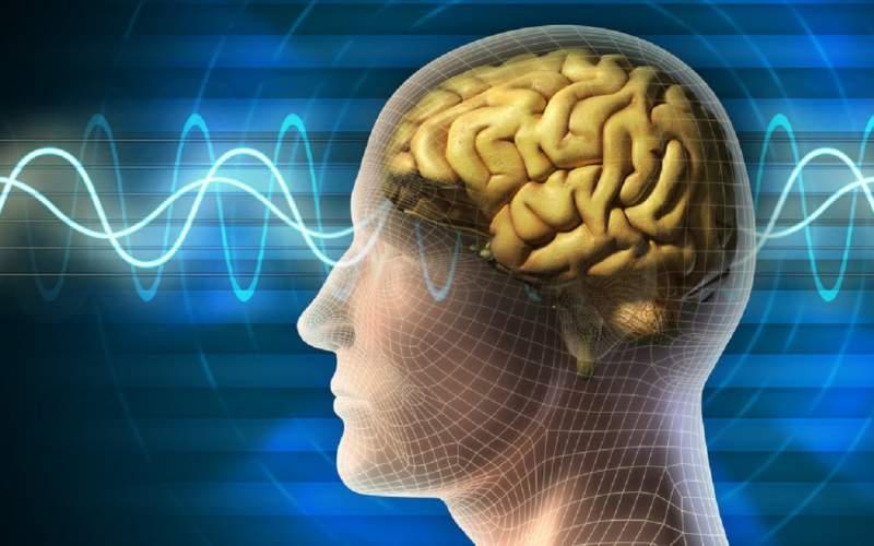 پیشبینی احتمال سکته مغزی با یک تراشه کوچک