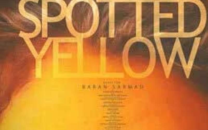 حضور زرد خالدار در جشنواره پالم اسپرینگز
