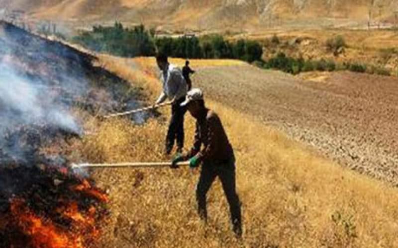 آتشسوزیها چه ارتباطی با خشکسالی دارند؟