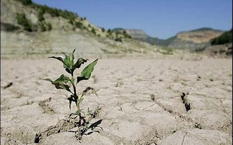کاهش ۵۰تا ۸۵درصدی بارشها دربرخی از استانها