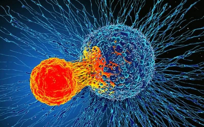 کاهش خطر ابتلا به سرطان با چند راهکار ساده