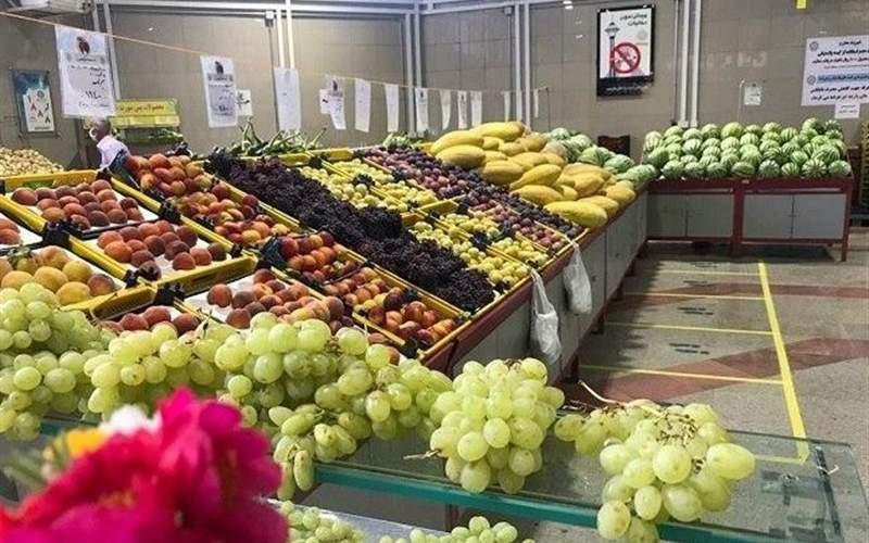 میوههایی که فقط باید دید و نخرید