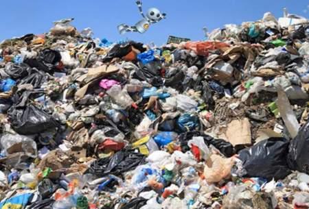 هوش مصنوعی به کمک تفکیک زبالهها میآید