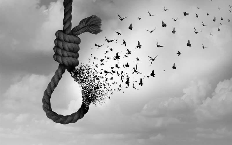 خودکشی در دانشجویان دکترا بیشتر است