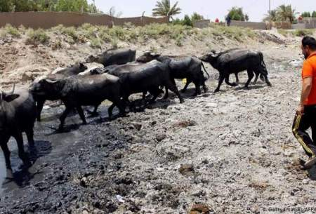 عراق:ایران جلوی آب را بگیرد شکایت میکنیم