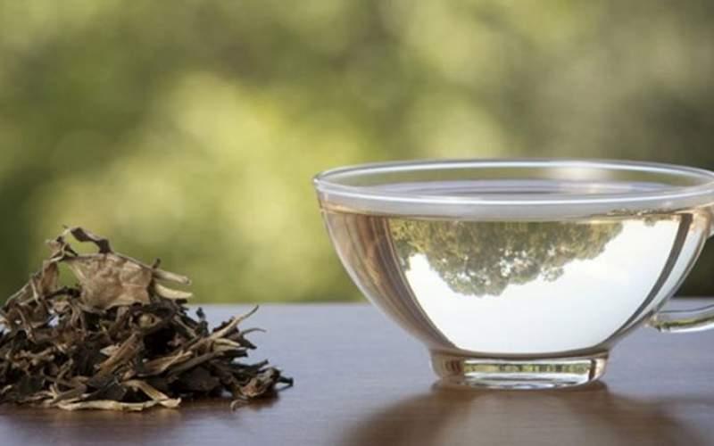 چای را در این زمان بنوشید خطرناک است