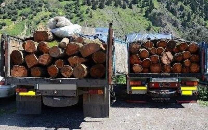 کشف ۹ تن چوب قاچاق در شهرستان سنندج