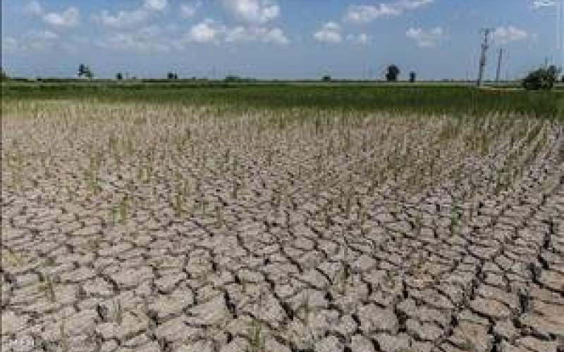سراسر خوزستان دچار خشکسالی شدید است