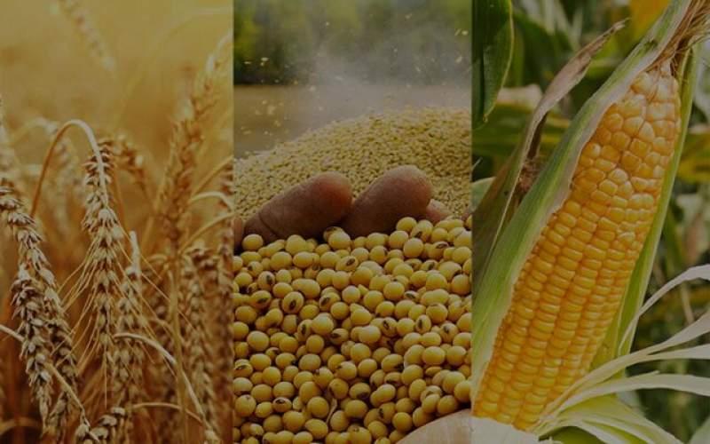 دور ریز ۲.۵ میلیارد تن مواد غذایی در جهان