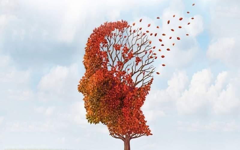 فعالیتهایی که شما را از آلزایمر دور میکند