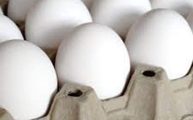 آیا تخم مرغ  باز هم گران میشود؟